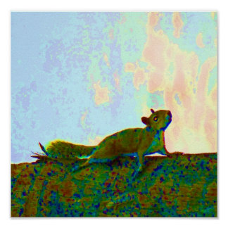 squirrel psychadelic photo poster
