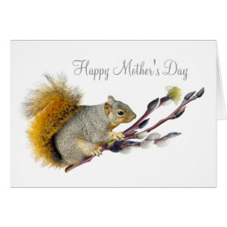Squirrel Pussy Willow Mother's Day Card
