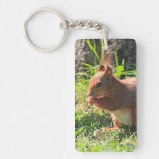 Squirrel red cute beautiful photo,  gift rectangle acrylic keychains