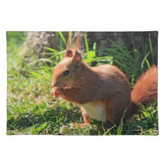 Squirrel red cute beautiful photo placemat