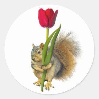 Squirrel Red Tulip Stickers