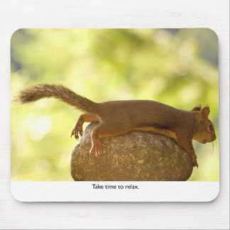 Squirrel Relaxing Mouse Pad