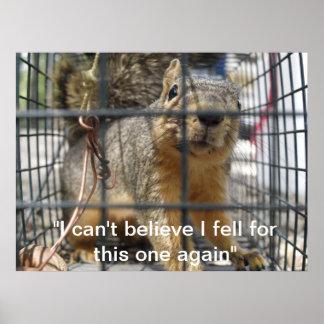 Squirrel Relocation Print