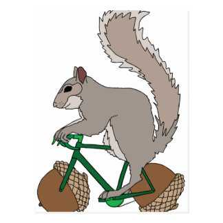 Squirrel Riding Bike With Acorn Wheels Postcard