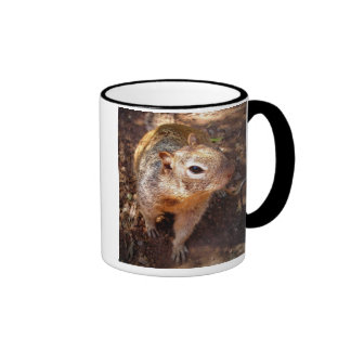Squirrel Ringer Coffee Mug