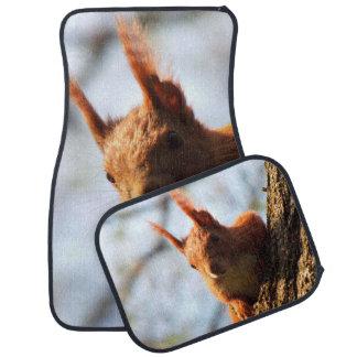 Squirrel Rodent Mammal Car Floor Mat
