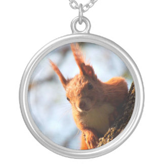 Squirrel Rodent Mammal Round Pendant Necklace