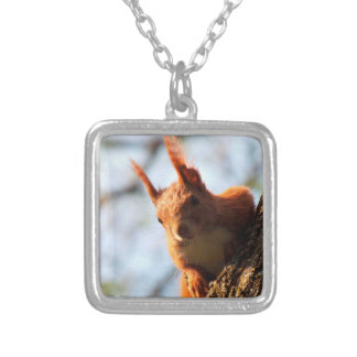Squirrel Rodent Mammal Square Pendant Necklace