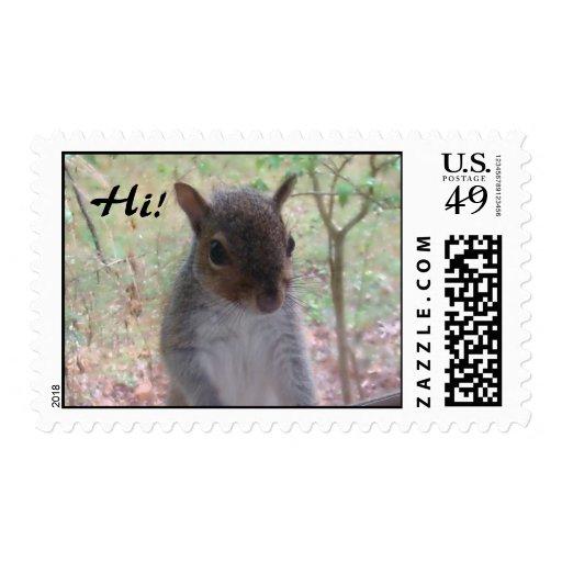 Squirrel Says Hi! Postage Stamps
