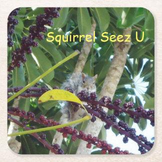 Squirrel Seez U Square Paper Coaster