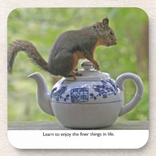 Squirrel Sitting on a Teapot Beverage Coaster