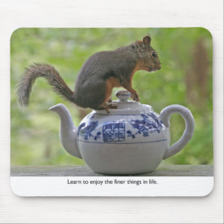 Squirrel Sitting on a Teapot Mousepads