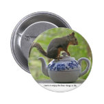 Squirrel Sitting on a Teapot Pins
