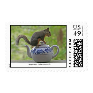 Squirrel Sitting on a Teapot Postage