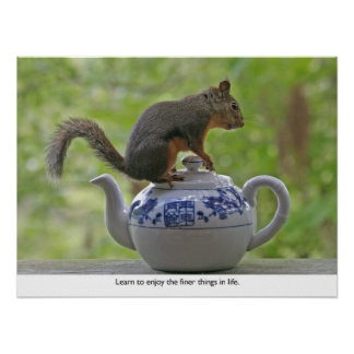 Squirrel Sitting on a Teapot Poster