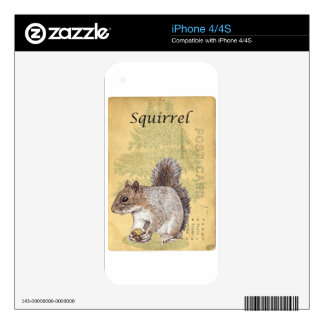 Squirrel Skins For The iPhone 4S
