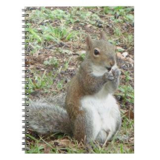 Squirrel Spiral Photo Notebook