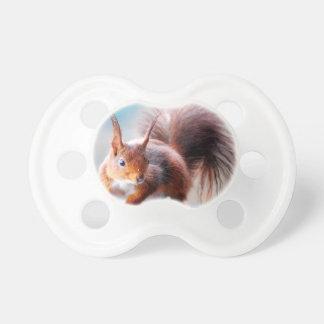 Squirrel squirrel Écureuil Pacifier