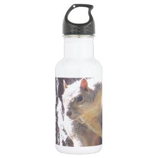 Squirrel Stainless Steel Water Bottle