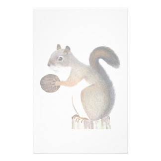 Squirrel Stationery