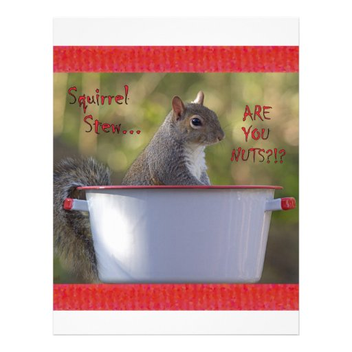 Squirrel Stew … ARE YOU NUTS?!? Customized Letterhead