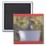 Squirrel Stew... ARE YOU NUTS?!? Magnets