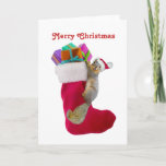 Squirrel Stocking Christmas Card