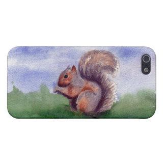 Squirrel Study IPhone 4 Case