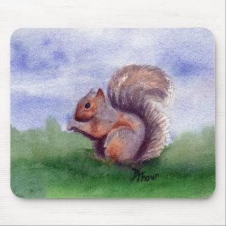 Squirrel Study Mousepad