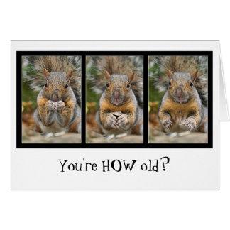 Squirrel Surprise Birthday Card