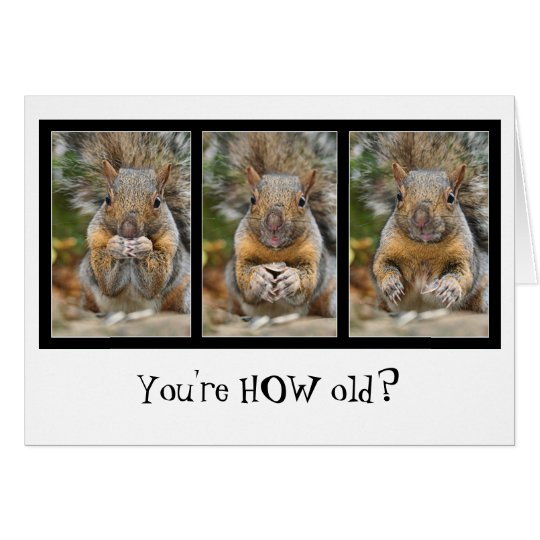 Squirrel Surprise Birthday Card