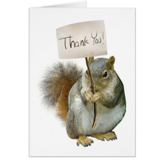 Squirrel Thank You Card