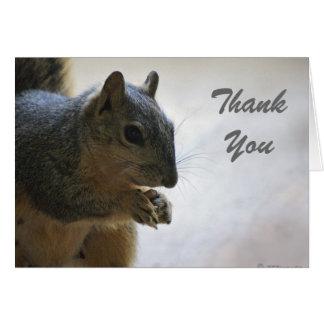 Squirrel, ThankYou Card