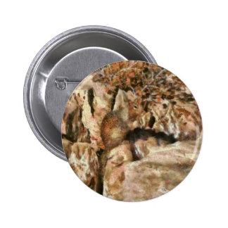 Squirrel - The Squirrel Pinback Button