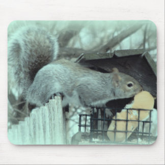Squirrel Thief Mouse Pad