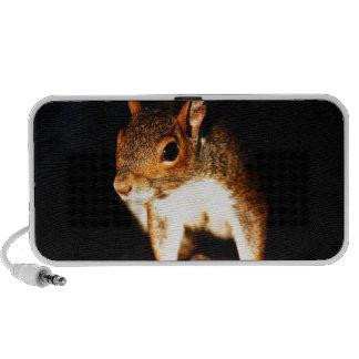 Squirrel Travel Speakers