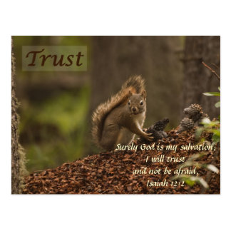 Squirrel - Trust Postcard