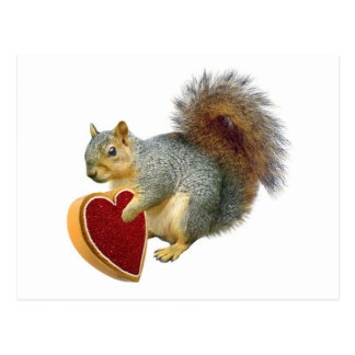 Squirrel Valentine Postcard