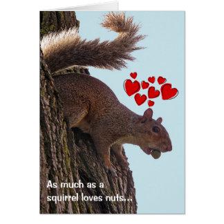 Squirrel Valentine's Day Card