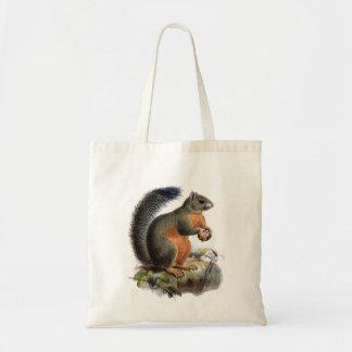 Squirrel vintage illustration budget tote bag