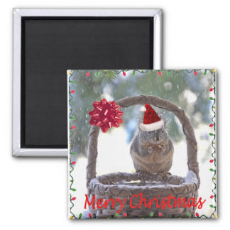 Squirrel Wearing Santa Hat Fridge Magnets