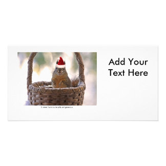 Squirrel Wearing Santa Hat Photo Greeting Card