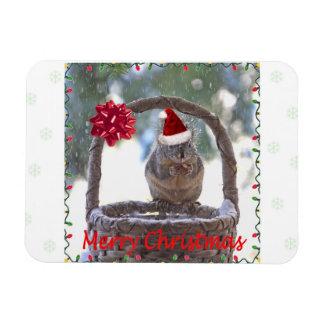 Squirrel Wearing Santa Hat Rectangular Magnet