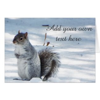 squirrel winter snow card