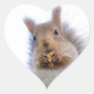 Squirrel with a walnut heart sticker