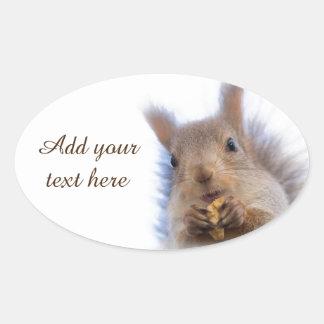 Squirrel with a walnut oval sticker