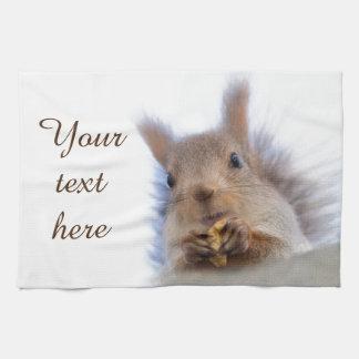 Squirrel with a walnut towel