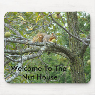 Squirrel With A Walnut, Welcome To The Nut House Mouse Pad