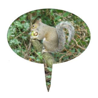 Squirrel with Acorn Cake Pick