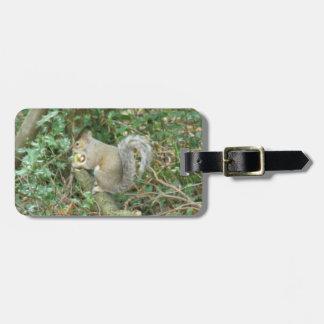Squirrel with Acorn Custom Luggage Tag